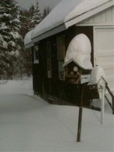 Snowstorm?